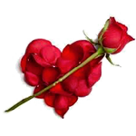 Heart & Rose Facebook Emoticon